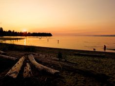 Visit Vancouver Island to find yourself in your element. Create a custom travel formula and plan your Vancouver Island travel. Visit Vancouver, Vancouver Island, Beach Club Resort, Hotel Amenities, Beach Scenes, Hotels And Resorts, British Columbia, Beautiful Beaches, Great Places