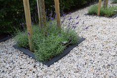 Flower Garden Design, Natural Living, Garden Inspiration, Outdoor Gardens, Color Pop, Outdoor Living, New Homes, Home And Garden, Nature