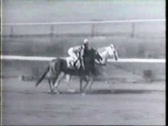 April 2, 1938: Born, Whirlaway. He lost nearly half of all the races he ever ran. He preferred to run on the outside rail. When he got ahead of the other horses in a race, he got bored and started zigzagging all over the track. All in all, he was a pretty unlikely horse to win the Triple Crown, but that's what he did, in 1941.