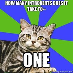 LOL!  For all my introverty friends.