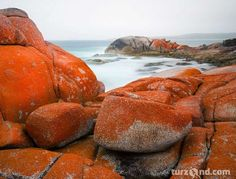 Seascape long exposure image captured at Bay of Fires, Tasmania by photographer Alex Wise. Long Exposure, Tasmania, Fire, Water, Photography, Travel, Austria, Outdoor, Image