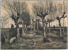 Pollard Birches by Vincent Van Gogh - 1395 - Drawing