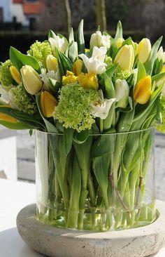 50 Best Ideas Tulips In Vase - Tulpen Pretty Flowers, Fresh Flowers, Spring Flowers, Spring Bouquet, Simple Flowers, Yellow Flowers, Yellow Vase, Tulip Bouquet, Tulips Flowers