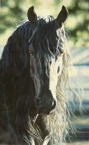 Horses Of Black Onyx