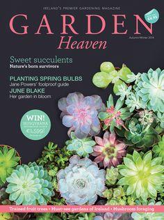 Garden Heaven's gorgeous Autumn/Winter 2014 cover Gardening Magazines, Fall Winter, Autumn, Spring Bulbs, Fruit Trees, Magazine Covers, Succulents, Heaven, Bloom
