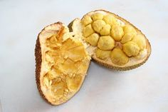 GardenSeed: Cempedak Fruit (Artocarpus champeden)