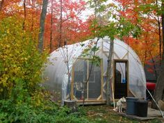 Live in a tent inside the Greenhouse while building his house. Picture of Live…