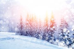 6bed930ffe48 Find Beautiful Winter Landscape Snow Covered Trees Stock Images in HD and  millions of other royalty-free stock photos