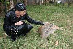 If you visit the Arkansas Native Plant and Wildlife Center, you can meet Sheena the 250-lb Mountain Lion. Be sure to make a donation and make a difference in the lives of these animals. (Karen Snow pictures with Sheena the Mountain Lion. Image courtesy of Roger Johnson; SPecial Thanks to Thunder TV)