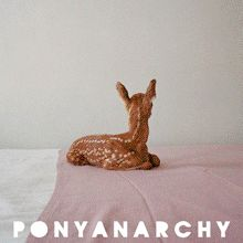 Pony Anarchy - indie fashion, art, + life  Issue #9 The Animal Issue   #ponyanarchy