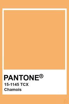 Pantone Chamois Paleta Pantone, Pantone Orange, Pantone Tcx, Pantone Swatches, Color Swatches, Pantone Color Chart, Pantone Colour Palettes, Colour Pallete, Colour Schemes