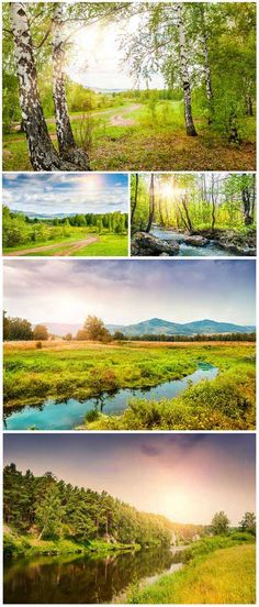 Beautiful landscapes, birch grove, river - stock photos