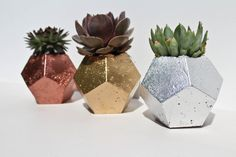 A perfect way to add an industrial concrete look to your home!  These are handmade concrete planters/pots perfect for cacti or succulents. The concrete mixture has been poured into a hand made mold, set, washed, painted and sealed with a protective finishing spray.  Dimensions-  H 10 cm approximately.  Each planter has its unique set of flaws, such as concrete irregularities (colour variations and air bubbles) which are part of a hand made product and are not considered a fault but ...