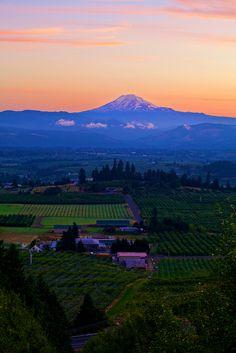 Sunrise Over Mt Adams, Oregon