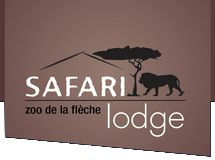 A Zoo in France has a place to lodge where you can have a personal view of animals right at your window!