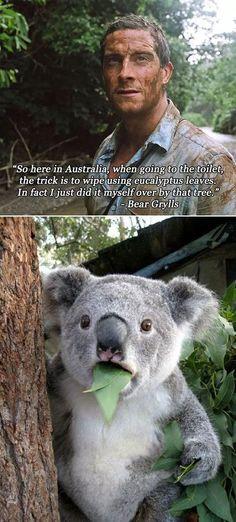 Top 30 Funniest Quotes #Humor #Jokes