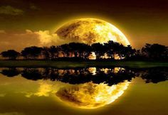 Best collection of most beautiful Moon pictures amazing photographs. These stunning moon photos are best to use as wallpapers or your cover photos. Beautiful Moon, Beautiful World, Beautiful Places, Beautiful Pictures, All Nature, Amazing Nature, Amazing Sunsets, Dream Meanings, Moon Pictures