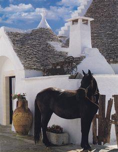 Trulli di Alberobello e cavallo murgese, Puglia, Italia