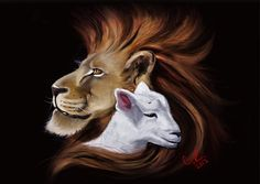 Lion and lamb by CobyRicketts on DeviantArt Lion And Lioness, Lion Of Judah, Lamm Tattoo, Lion And Lamb, Lion Love, Tribe Of Judah, Jesus Painting, Prophetic Art, Lion Art