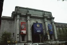 NYC Museum of Natural History