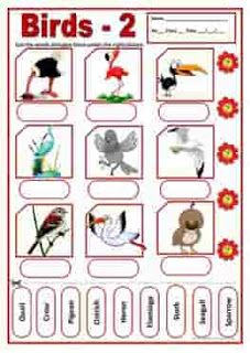 Birds Names Vocabulary Worksheets And Crosswords Vocabulary Birds Vocabulary Worksheets