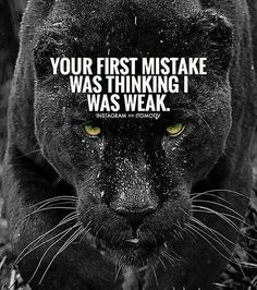 Moving On Quotes : Are u Moving in silence ? Quotable Quotes, Wisdom Quotes, True Quotes, Motivational Quotes, Inspirational Quotes, Lion Quotes, Wolf Quotes, Joker Quotes, Citation Lion