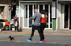 Viva Torrevieja!: Småhundar är stort i Spanien!