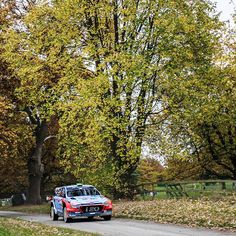 What a wonderful course of WRC Wales Rally to drive through - 가을 분위기가 물씬 나는둘째 날의 WRC 영국 웨일즈 랠리 - #autumn #fall #lovely #talltrees #colorful #niceview #cantstopwatching #gofaster #gravel #run #race #carwithoutlimits #i20WRC #Wales #United_Kingdom #Rally #motorsport #WRC #Hyundai
