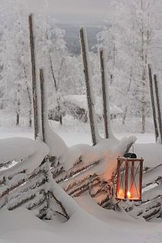 A beautiful photo. Snow. A perfect day to curl up with a good book and hot chocolate in front of the fireplace and watch the snowflakes fall.