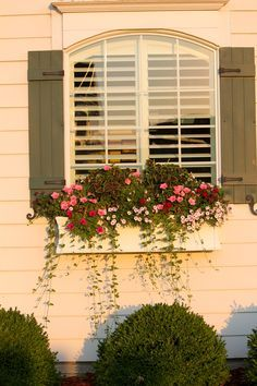 simple window boxes that are beautiful - Google Search