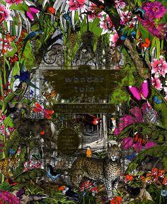 De Wondertuin is een super prachtig geillustreerd informatief boek over verschillende fantastische mooie plaatsen op de wereld en veel weetjes over hun flora en fauna en over de dieren die er wonen, de prenten zijn adembenemend mooi ! ze hebben dit boek in de bibliotheek muntpunt in Brussel !