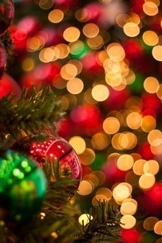 Christmas Cover, Christmas Time Is Here, Merry Christmas Everyone, Christmas Mood, Christmas Bulbs, Christmas Lights Wallpaper, Holiday Wallpaper, Holiday Images, Christmas Pictures