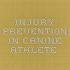Injury prevention in canine athlete