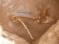 The skeleton of a pregnant woman, dating back around 3,200 years, has been found near a temple dedicated to the Egyptian goddess Hathor at King Solomon's Mines in Israel.