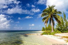 Your Grand Cayman vacation forecast: sunny skies and warm water. barretttravel.globaltravel.com pamelabarrett22@gmail.com