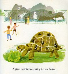 A giant tortoise was eating lettuce for tea    Topsy & Tim at the Zoo  Jean & Gareth Adamson, 1968