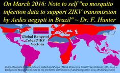 A+Crime+Against+Humanity:+How+the+CDC+and+WHO+Are+Promoting+the+Global+Spread+of+Zika