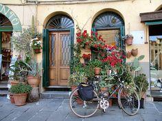 Street Scene Door, Lucca, Italy