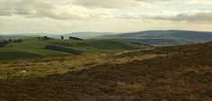 The Long Mynd in Shropshire, England