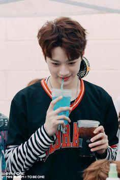 Kpop collection - Lai Guanlin (Wanna One) Guan Lin, Lai Guanlin, Ong Seongwoo, Lee Daehwi, Produce 101 Season 2, Kim Jaehwan, Ha Sungwoon, Thing 1, Cube Entertainment