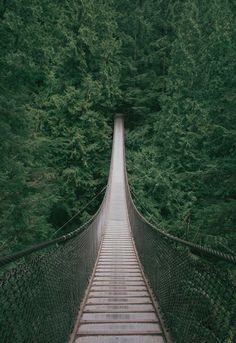 Lynn Canyon Suspension Bridge, British Columbia, Canada - I dream of this exact bridge several times a year, although I have never, before now, laid eyes on it.
