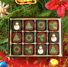 Holiday Collection from our Ecole Chocolat graduate Chocolate Visions! Flavors include: Omega (olive oil & fleur de Sel), Creme Fraiche, Hazelnut and Meyer Lemon Olive Oil.
