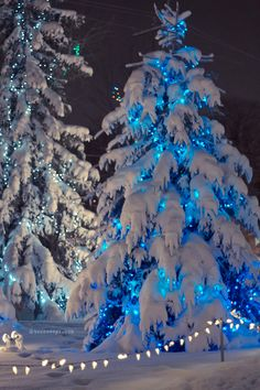 Christmas Scenery, Beautiful Christmas Trees, Christmas Mood, Noel Christmas, Christmas Images, Vintage Christmas, Christmas Lights, Christmas Aesthetic, Outdoor Christmas Decorations