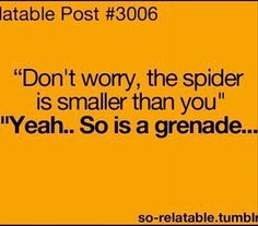 Yeah people say that. Don't worry, the spider is smaller then you. haha Gotta remember this!!!! lol