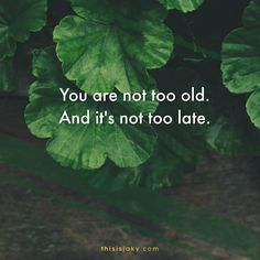You are not too old. And it's not too late. quotes. quote. motivational quote. inspirational quote. dream big. go far. go for it. set a goal.  www.thisisjaky.com