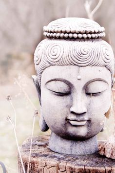 """Exaggeration is truth that has lost its temper"" ~ Khalil Gibran Buddha Zen, Gautama Buddha, Buddha Meditation, Baltasar Gracian, Buddha Sculpture, Oriental, Arte Pop, Beautiful, Buddah Statue"