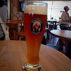 wheat-weizen : Photo