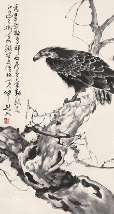 Gao Jianfu(高剑父) , Eagle Painting, Zen Painting, Japan Painting, Chinese Artwork, Chinese Painting, Eagle Drawing, Ink In Water, Chinese Landscape, China Art