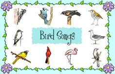 Learn how to identify some different birds by their songs when you click on the bird and listen.