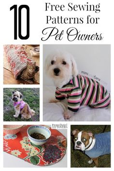 Diy Sewing Projects If you love to spoil your fur babies and DIY, makes sure you check out the 10 awesome and free sewing patterns for pets in this post! Diy Sewing Projects, Sewing Projects For Beginners, Sewing Hacks, Sewing Tutorials, Sewing Crafts, Sewing Ideas, Dog Crafts, Dog Clothes Patterns, Sewing Patterns Free